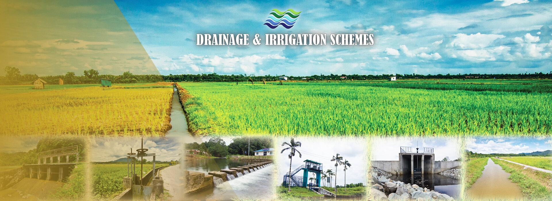 <p>Department Of Irrigation And Drainage</p>